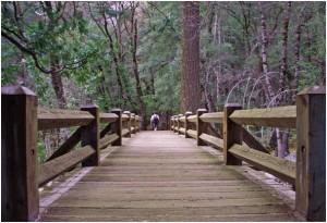 In der Hüftperspektive wird sogar eine schmale Holzbrücke zum riesigen Konstrukt Foto: Cornerstone / pixelio.de