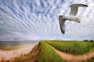 Das Weitwinkelformat ist für Landschaftsaufnahmen typisch – hier hat der Fotograf zudem den perfekten Zeitpunkt fürs Fotografieren getroffen Foto: Jenzig71 / photocase.com
