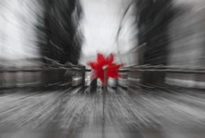 Der Zoomeffekt ist ein tolles Werkzeug für kreative Fotografen Foto: Sergej23  / pixelio.de