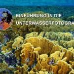 Cover Unterwasserfotografie